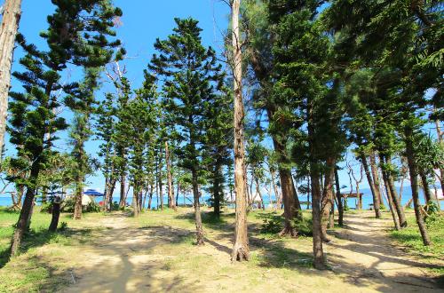 「熱田ビーチ」キャンプのできる家族向けビーチ。シュノーケルも自由