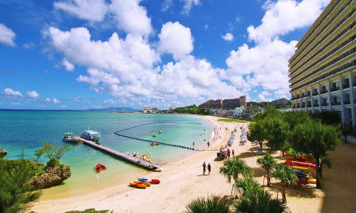 タイガービーチの魅力を徹底紹介!好きになる理由を6分で解説する!