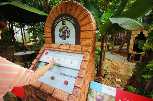 「OKINAWAフルーツらんど」熱帯果樹がメインの王様庭園!