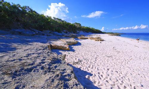 「伊計島東海岸」サーフィンスポットで知られる秘密海岸はこんな所!
