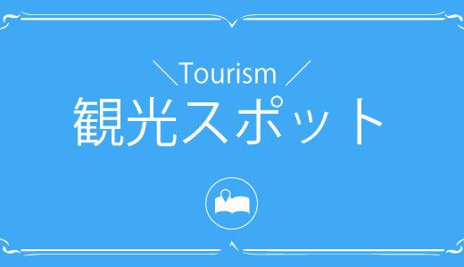 沖縄観光といえばここ!地元のプロが厳選する人気スポット紹介します