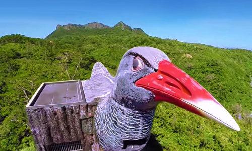 「ヤンバルクイナ展望台」沖縄の最北端、景観スポットを紹介するよ!